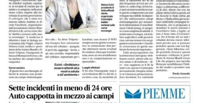 Corriere Adriatico 15-6-2020_page-0002