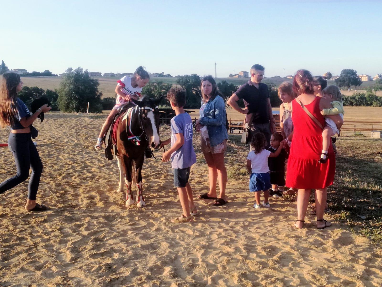 oasi pony 2