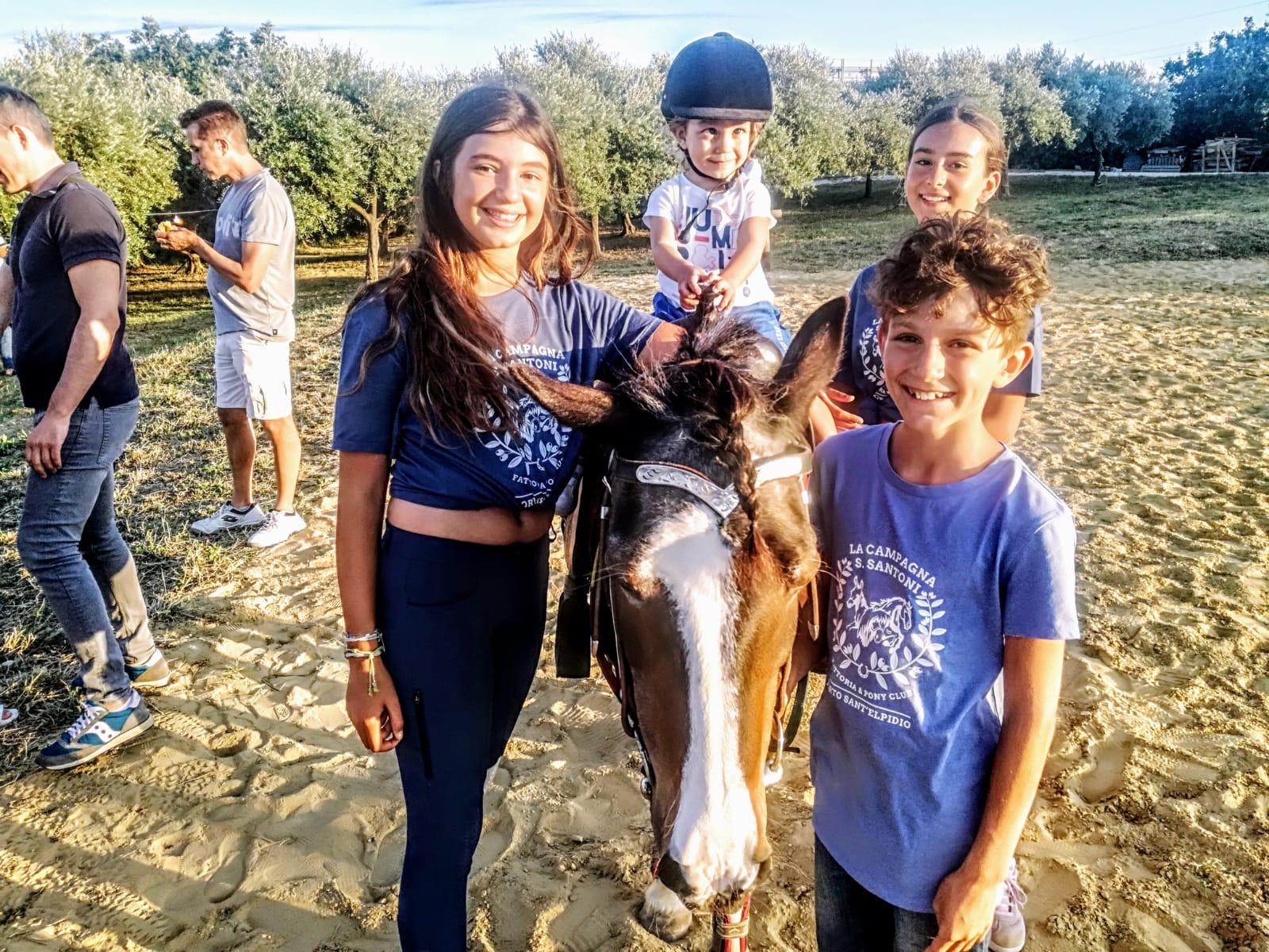 oasi pony 7
