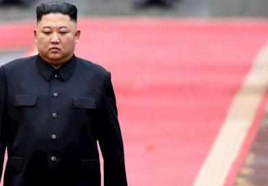 Allineati, come nelle assemblee nordcoreane dove tutti sono d'accordo